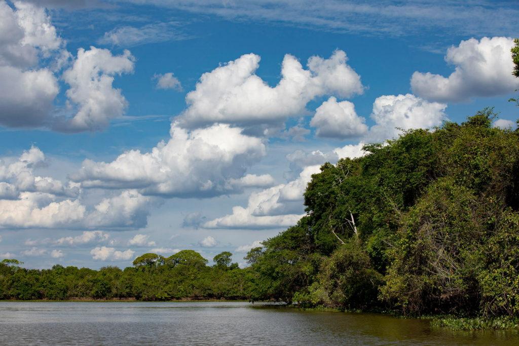 panaoramica-pantanal-23