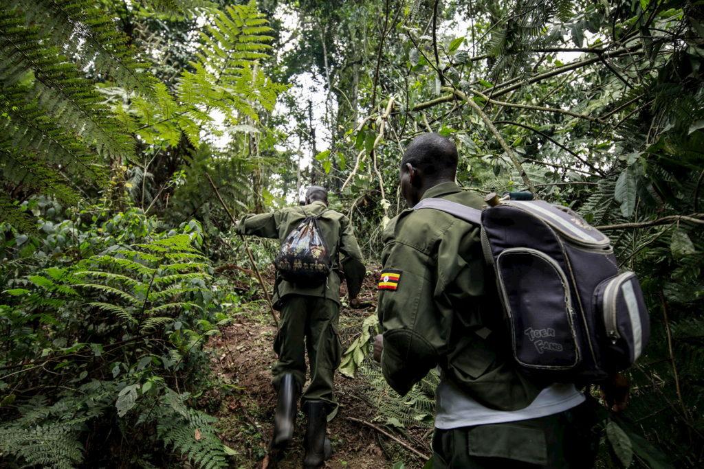 explore-uganda-11